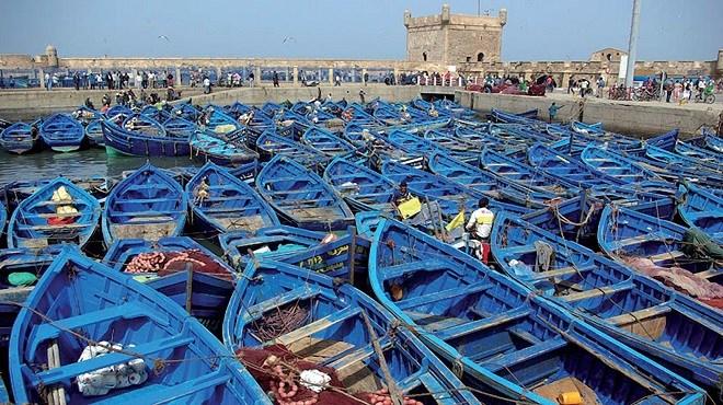 Pêche côtière et artisanale: hausse de 11% des débarquements au premier semestre 2019