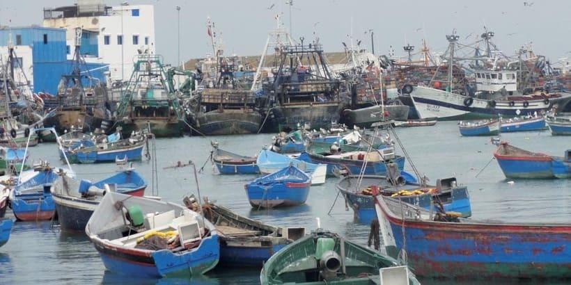 Pêche côtière : Une hausse de 9% à fin juillet - Actualité Économique
