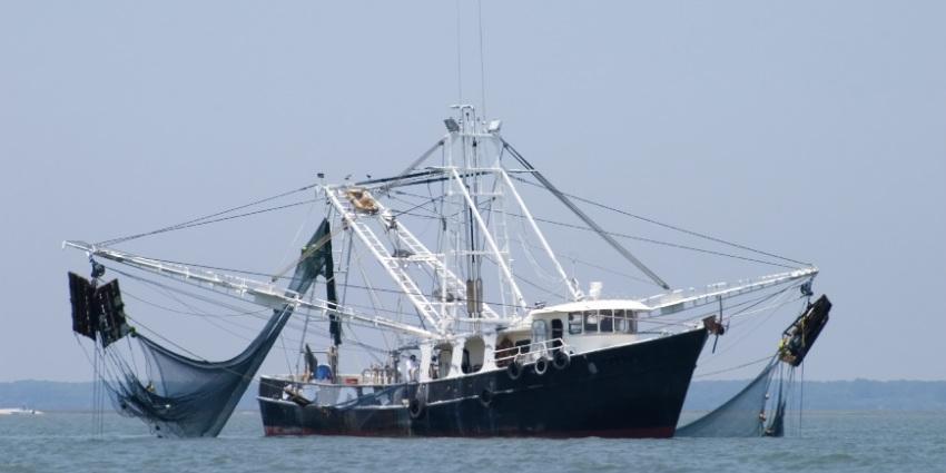 Pêche côtière et artisanale: hausse de 7% des débarquements à fin septembre