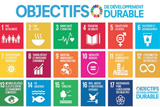 Objectifs de développement durable : Le rôle déterminant des banques publiques de développement